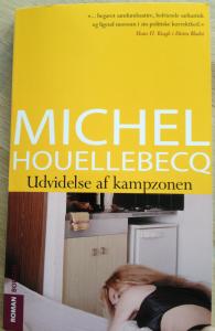 Michel Houellebecq: Udvidelse af kampzonen